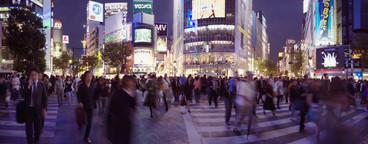 Big Lights Bright City  18