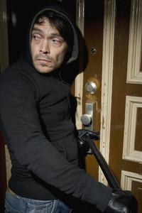Criminal Capers  09