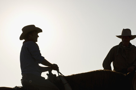 Cowboy Roundup  05