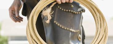Cowboy Roundup  08