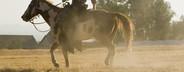 Cowboy Roundup  17