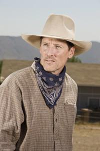 Cowboy Roundup 22