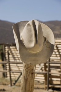 Cowboy Roundup 26