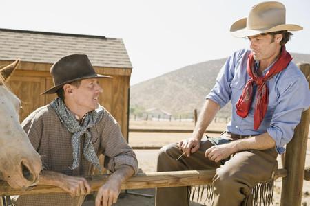 Cowboy Roundup 29