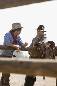 Cowboy Roundup 32