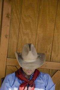 Cowboy Roundup 35