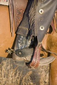 Cowboy Roundup 49
