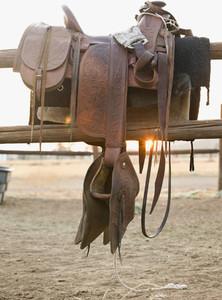 Cowboy Roundup 51