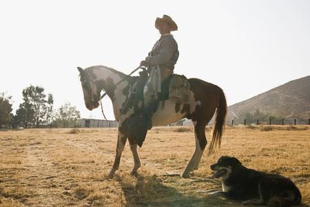 Cowboy Roundup 60