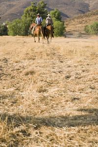 Cowboy Roundup  61