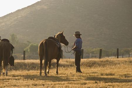 Cowboy Roundup 71