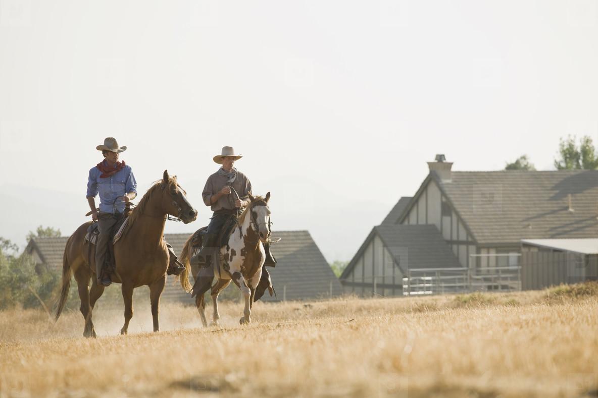 Cowboy Roundup  73