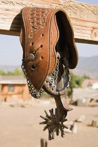 Cowboy Roundup 77