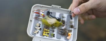 Fly Fishing  03