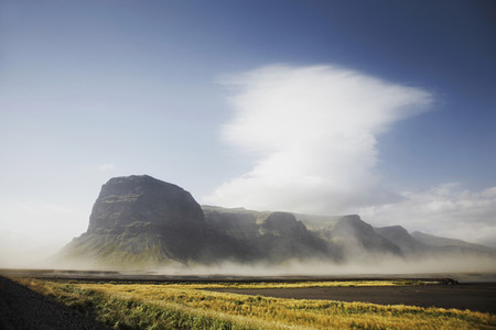 Iceland Wildlife 02