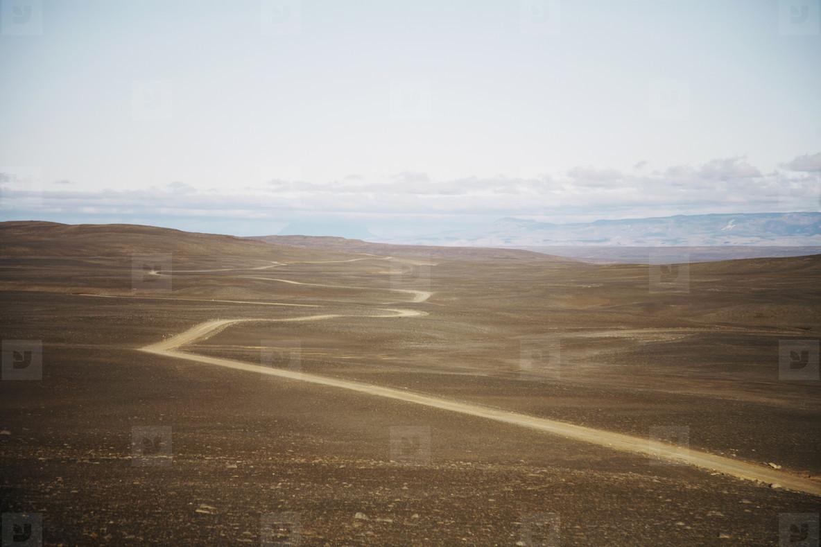 Iceland Wildlife  09