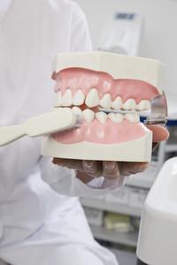 Dentistry  03