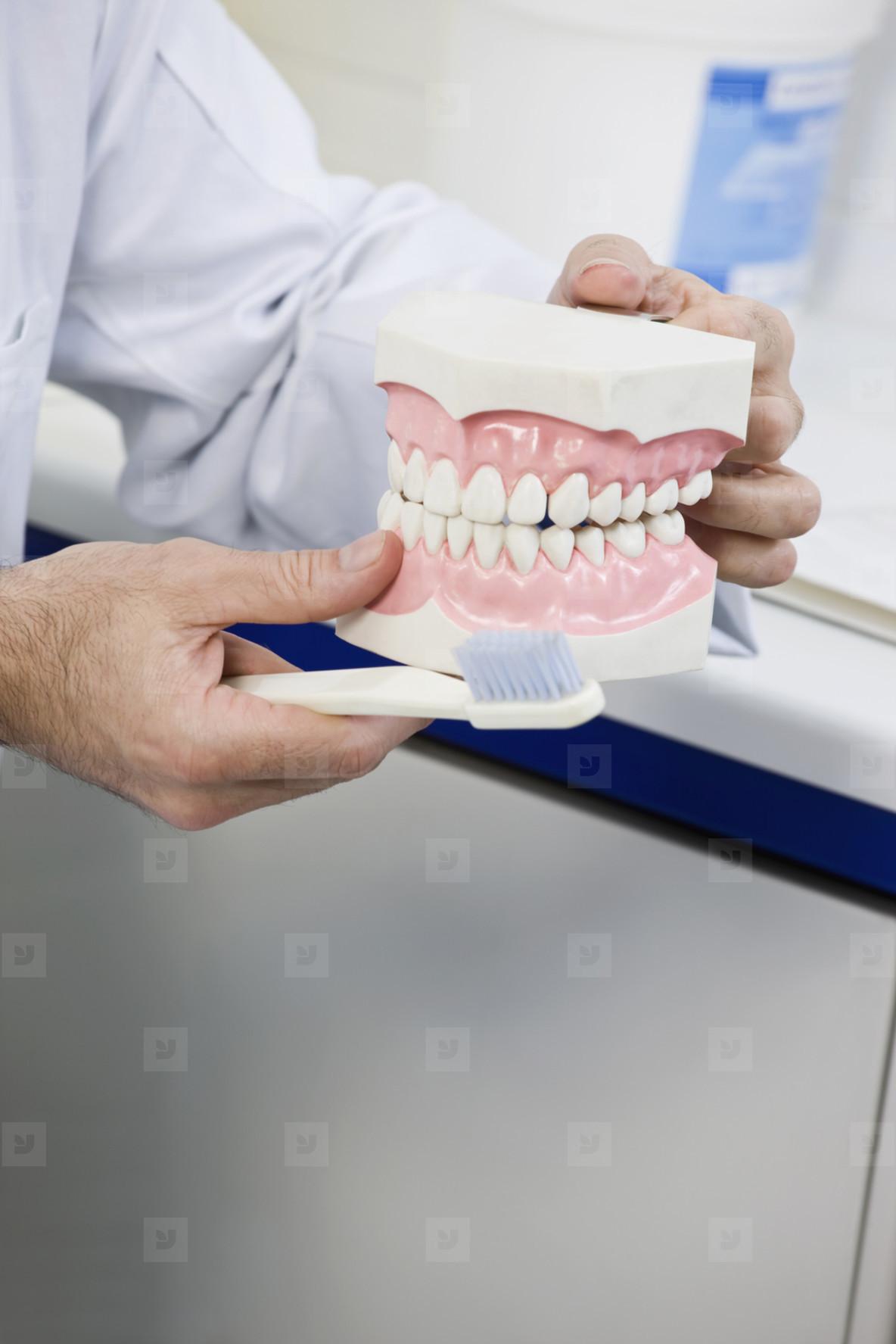 Dentistry  32
