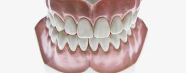 Dentistry  48