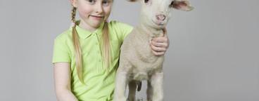 Livestock Lullaby  16