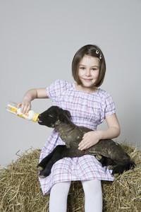 Livestock Lullaby 20