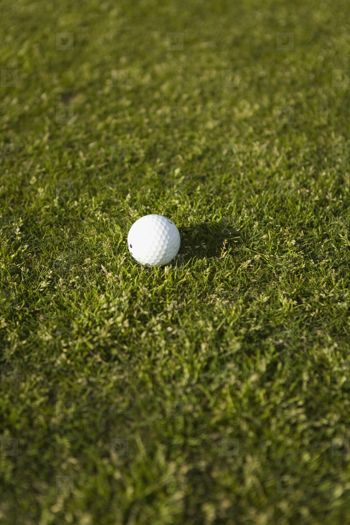 Golf Game  07