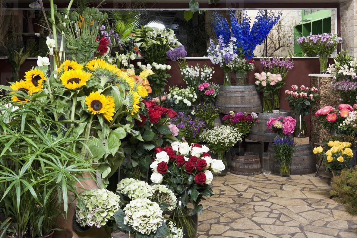 Little Shop of Flowers  01
