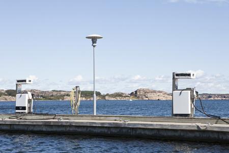 Swedish Summer  11