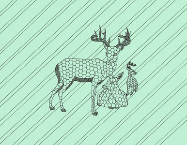 Animal Design  03