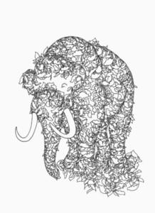 Animal Design 04