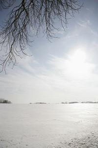 Snow Day 44