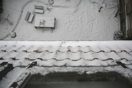 Snow Day 47