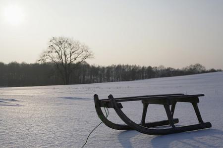 Snow Day 56