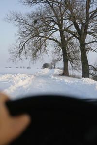 Snow Day 57