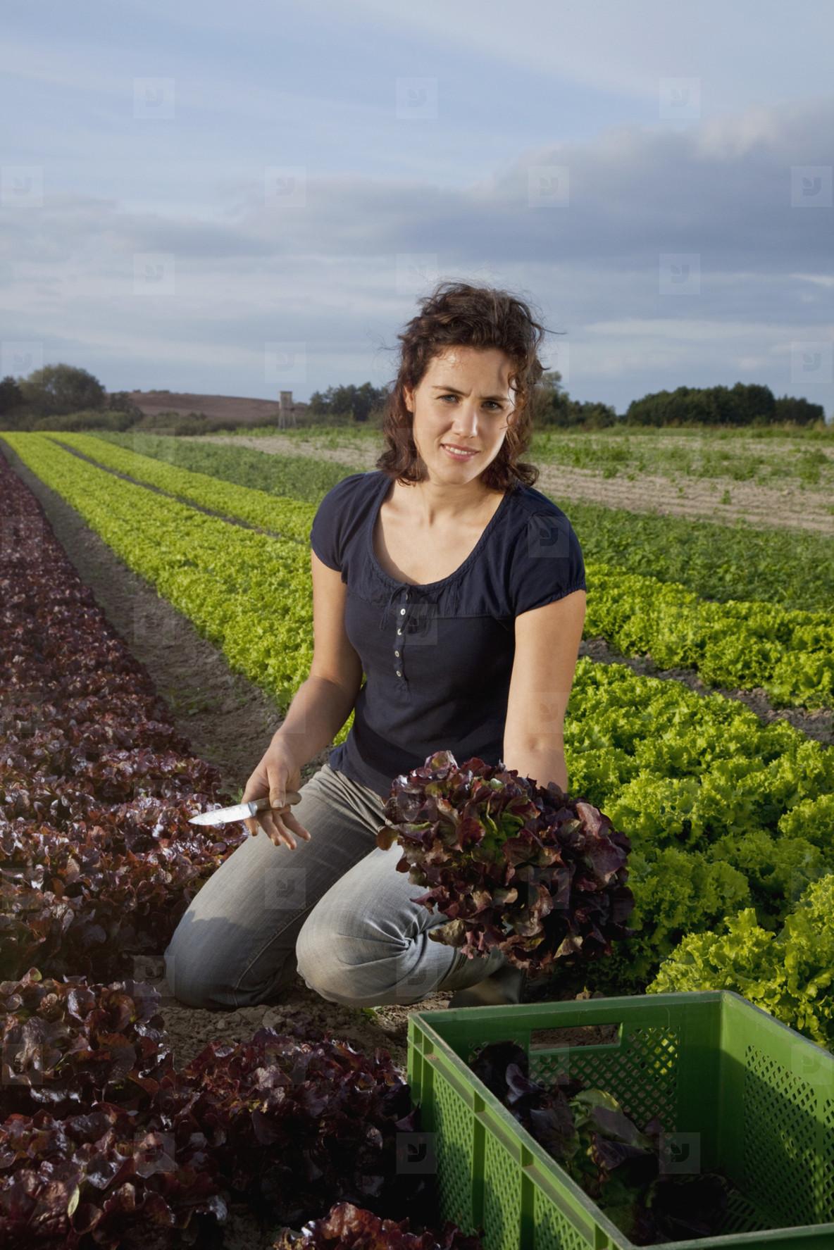 Farming Organically  06
