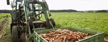 Farming Organically  22