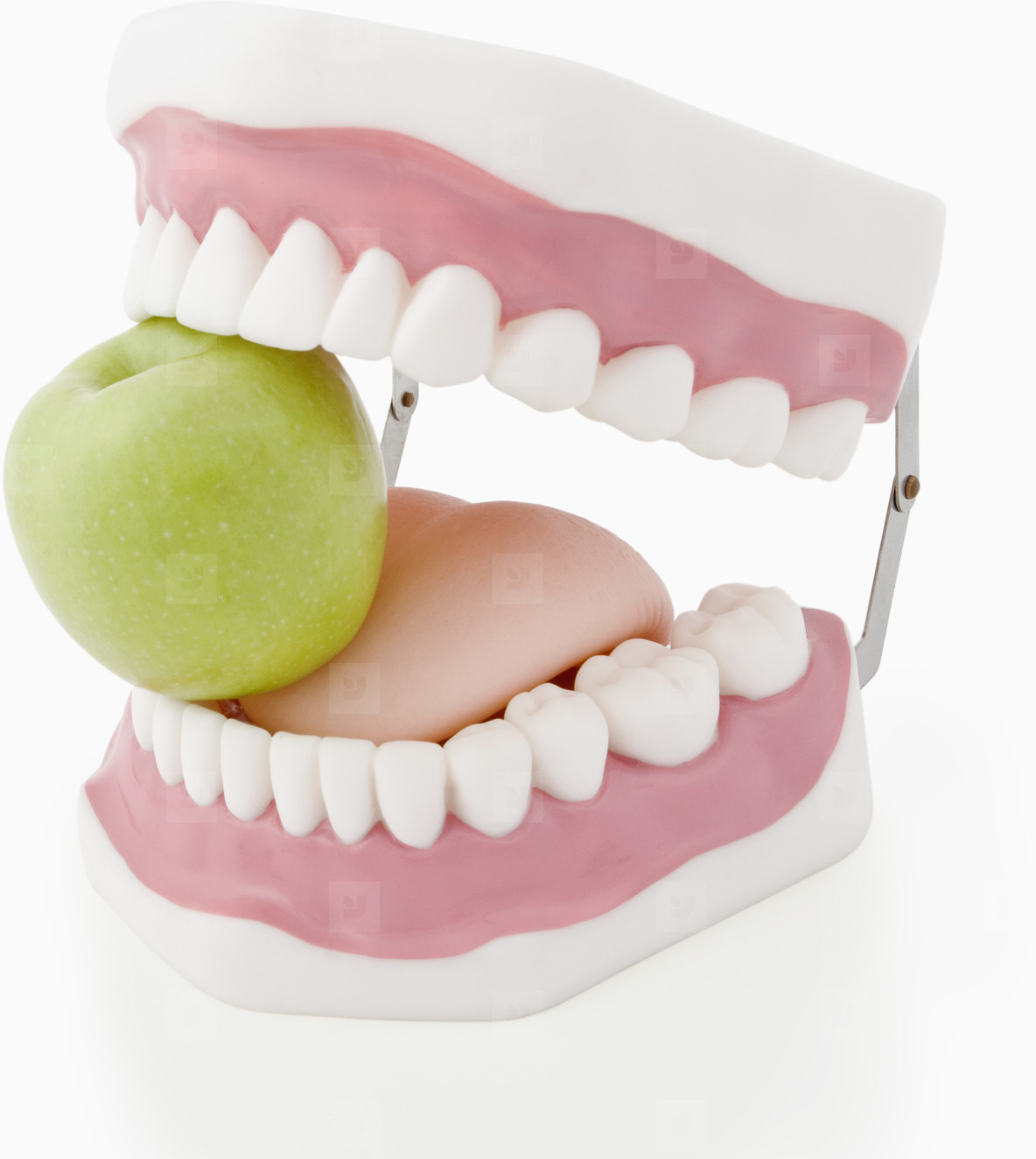 Big Mouth  07