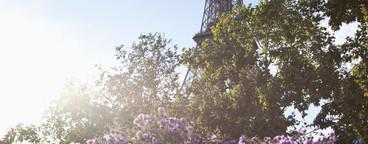 Paris in the Summer  17