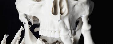 Skeleton Lives  01