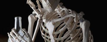 Skeleton Lives  04