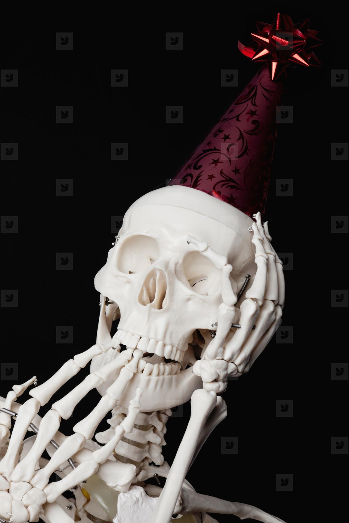Skeleton Lives  06