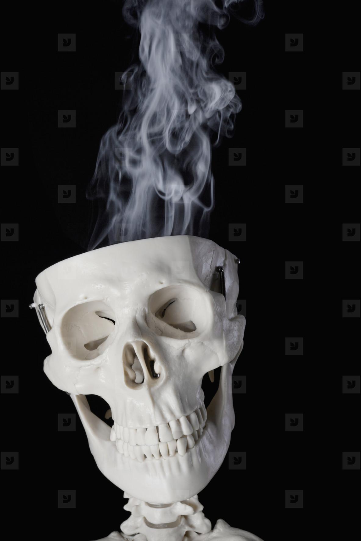 Skeleton Lives  08