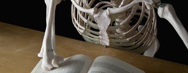 Skeleton Lives  09