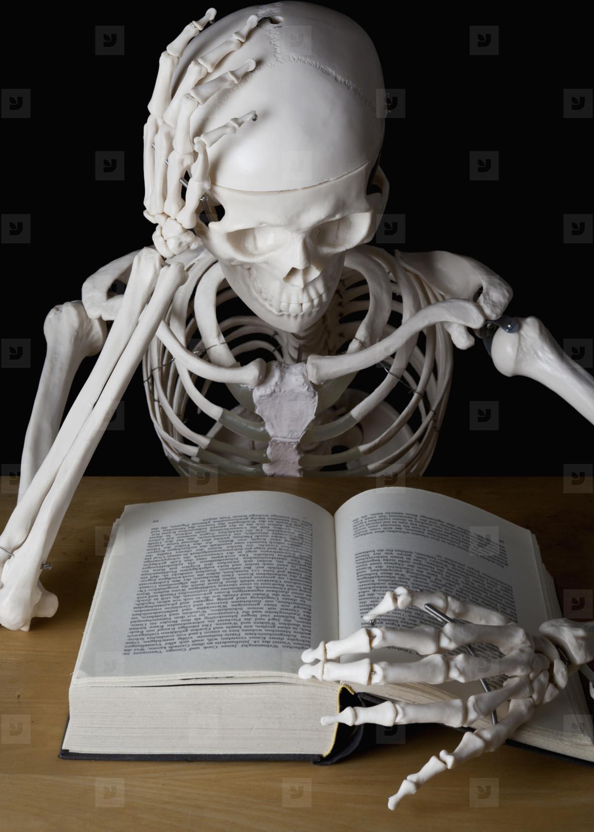 Skeleton Lives  23