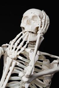 Skeleton Lives 28