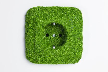 Green Living Miniatures 47