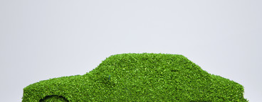 Green Living Miniatures  49