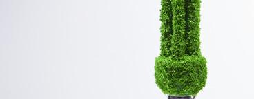 Green Living Miniatures  53