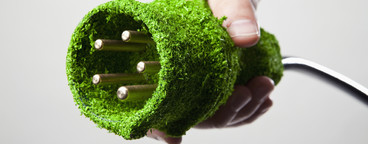 Green Living Miniatures  55