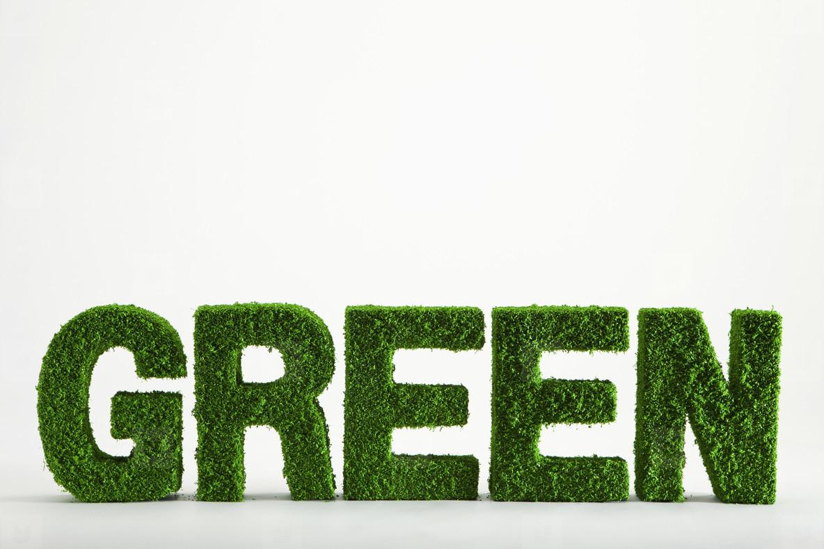 Green Living Miniatures  57